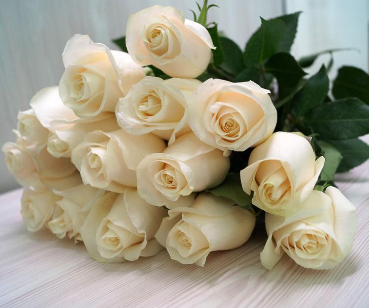роза венделла белые розы букет белых роз