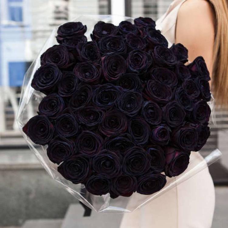 черная роза букет черных роз