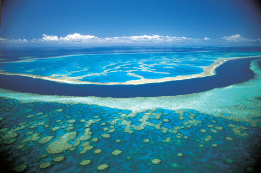 коралловое море